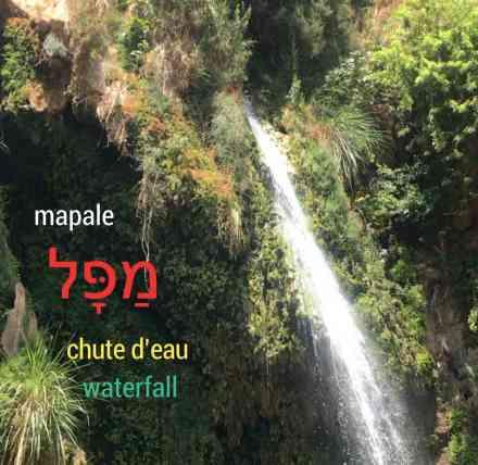 Ein guédi, Israel, chute d'eau