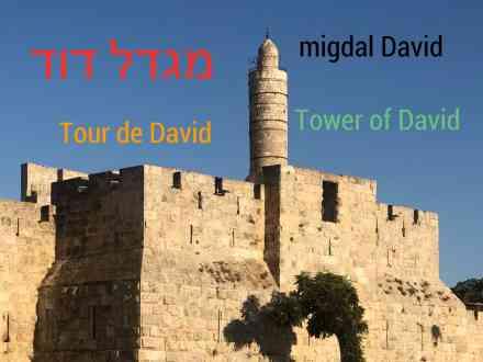 israel, tour de de david, voyage, hébreu, hebrew, hebreu be ivrit, beivrit