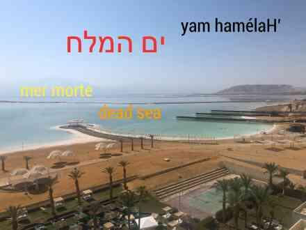 mer morte, israel, yam amelaH